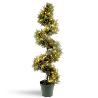 60-inch Upright Juniper Spiral Tree with Green Growers Pot and 150 Clear Lights