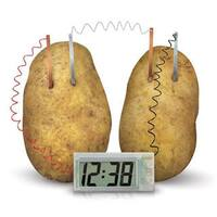 Toysmith Green Science Potato Clock