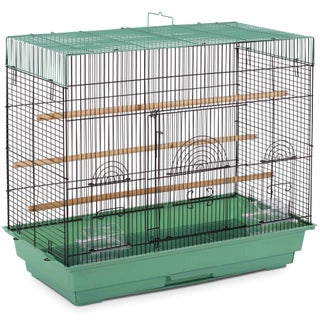 Prevue Pet Products Flight Cage (Option: Green)