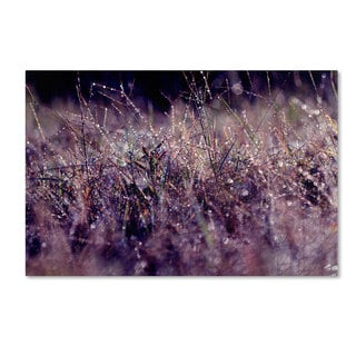 Beata Czyzowska Young 'Purple Rain' Canvas Art