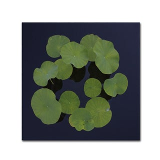 Shop Kurt Shaffer Giant Lily Pad Abstract Canvas Art