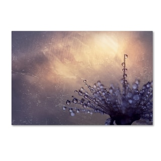 Beata Czyzowska Young 'All the Good Wishes' Canvas Art