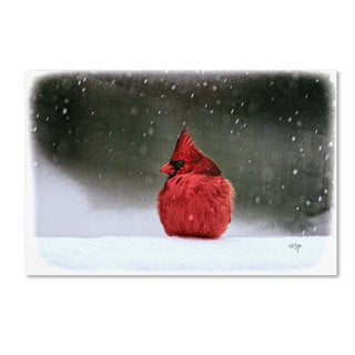 Lois Bryan 'A Ruby in the Snow' Canvas Art