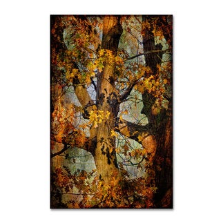 Lois Bryan 'Autumn Oaks in Dance Mode' Canvas Art