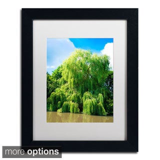Philippe Sainte-Laudy 'Weeping Willow' Framed Matted Art