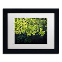 Philippe Sainte-Laudy 'Light Branch' Framed Matted Art