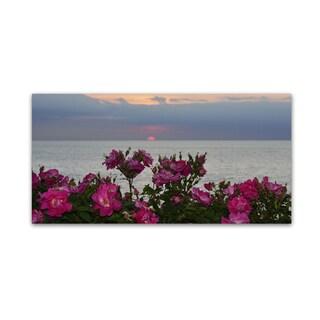 Kurt Shaffer 'Sunset Roses' Canvas Art