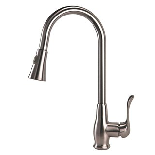 Fontaine Adriana Brushed Nickel 1-Handle Kitchen Faucet