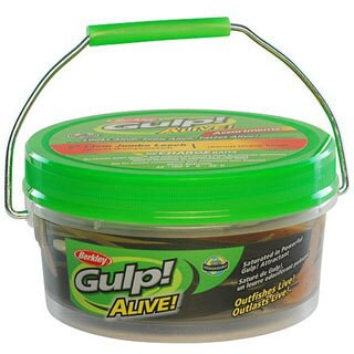 Berkley Glup! Alive! Jumbo Leech - Assorted Colors