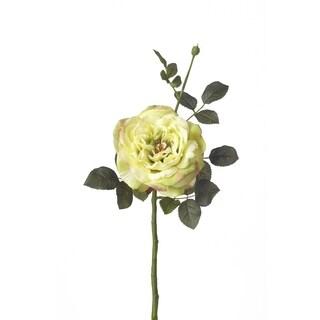 16.5-inch Garden Rose Stem (Pack of 12)