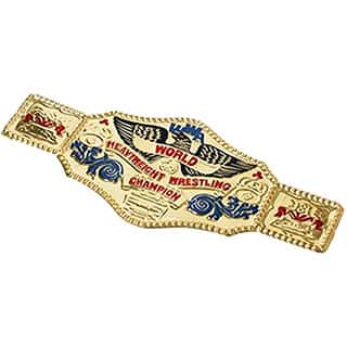 World Wrestling Championship Belt Costume Accessory