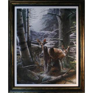 Kevin Daniel 'White Tail Fawn' Framed Artwork (24 x 30)