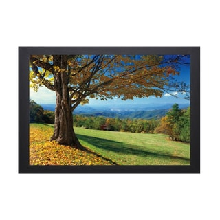 Mike Jones 'Blue Ridge Beauty' Framed Artwork