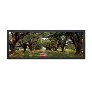 Mike Jones 'Enchanted Oaks' Framed Artwork