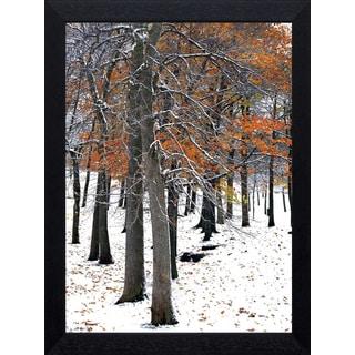 Burney Liberman 'SnowFall ll' Framed Artwork