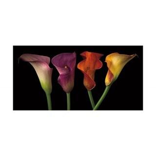 Assaf Frank 'Jewel Calla Lilies' Framed Artwork
