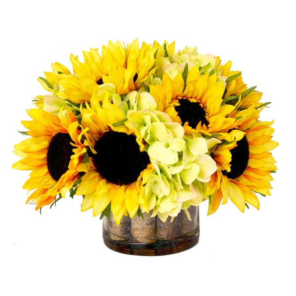 Creative Displays Sunflowers and Green Hydrangea in Glass Accented with Birch and Acrylic Water - CLEAR