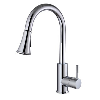 Century Home Living Single-lever Pull-out Sprayer Kitchen Faucet