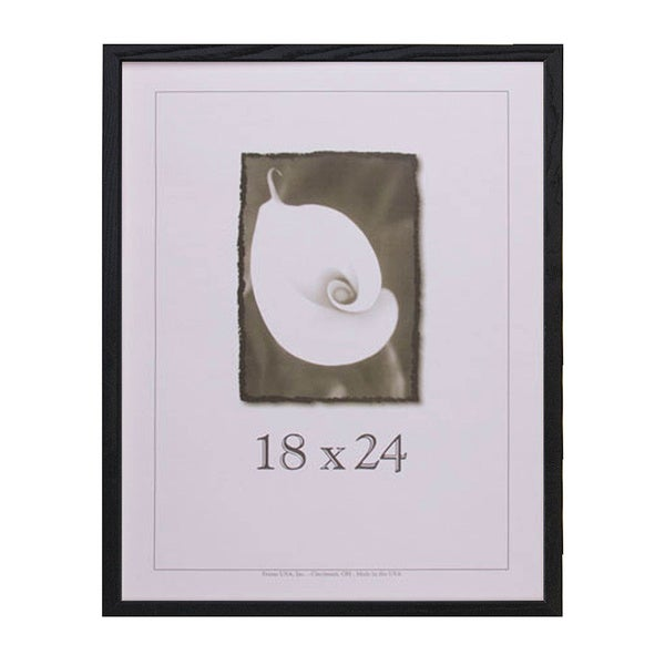 Architect Picture Frame (18u0026quot; x 24u0026quot;) - Free Shipping On Orders Over $45 ...
