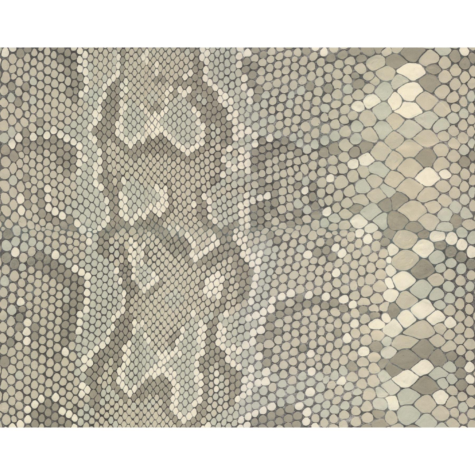 Brewster Viper Adhesive Film (Grey) (Plastic)