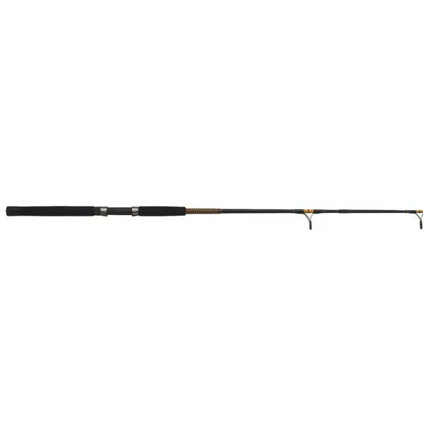 Ugly Stik Bigwater Rod