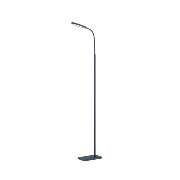 Lite Source Kairi LED Floor Lamp