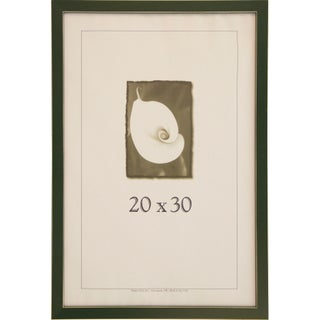 Clean Cut Picture Frame (20-inches x 30-inches) (Option: Green)