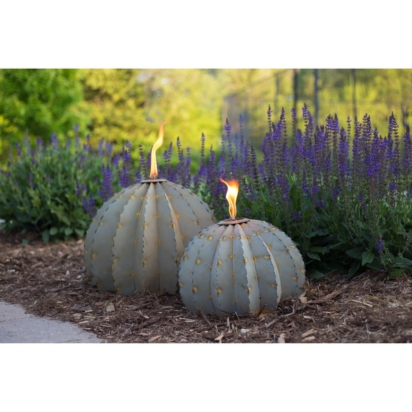 Desert Steel Small Golden Barrel Cactus with Torch