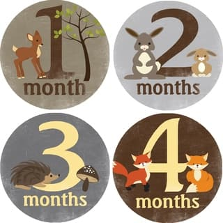 Rocket Bug Forest Critters Monthly Baby Bodysuit Stickers|https://ak1.ostkcdn.com/images/products/9914910/P17072695.jpg?impolicy=medium