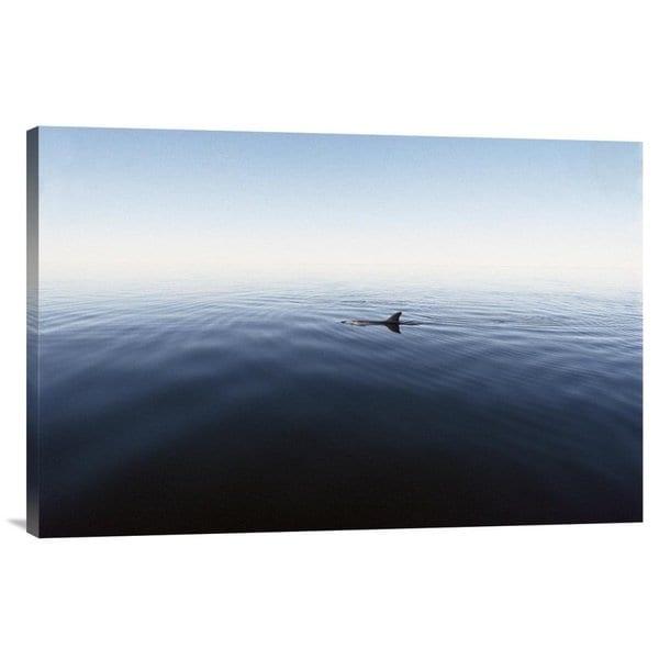 Global Gallery Flip Nicklin 'Bottlenose Dolphin surfacing, Shark Bay, Australia' Stretched Canvas
