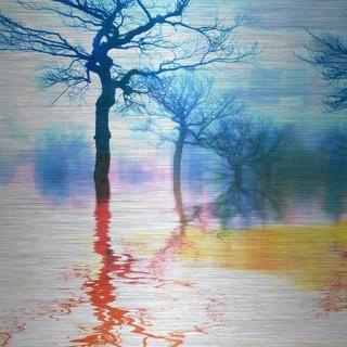 Parvez Taj 'Colorful Reflections' Aluminum Art