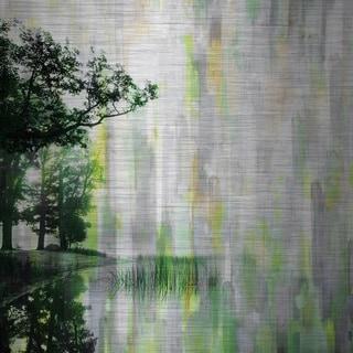 Parvez Taj 'Trees of Green' Canvas Art
