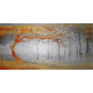 Parvez Taj 'Orange Shine' Aluminum Print Art