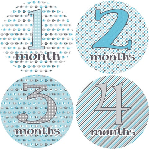 Marching Elephants Monthly Baby Bodysuit Stickers (Set of 13)