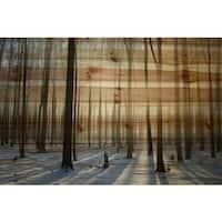 Parvez Taj 'Papineau' Painting Print on Natural Pine Wood - Multi-color