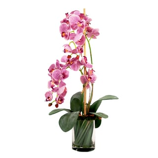 Rose-colored Silk Phalaenopsis Orchids with Orchid Leaves and Grass in Acrylic Water-filled Vase