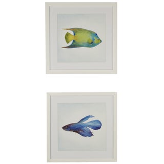 Watercolor Fish Framed Matted Giclee Print with Glass Wall Art (Set of 2)