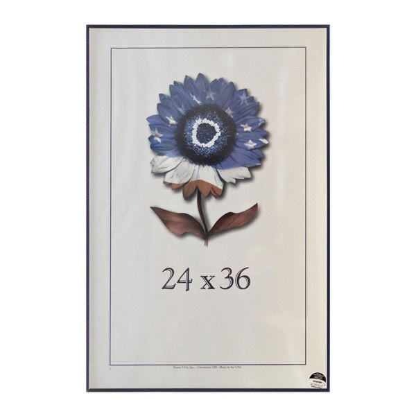 Metal II Picture Frame (24 x 36)