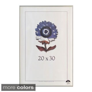 Metal I 20-inch x 30-inch Picture Frame
