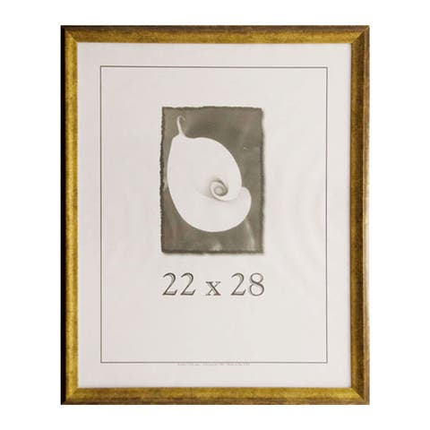 Verona Narrow 22-inch x 28-inch Picture Frame