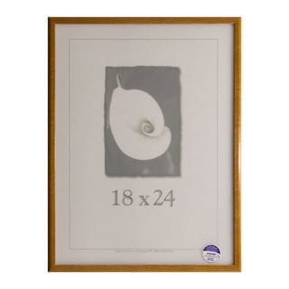 Economy 18-inch x 24-inch Picture Frame