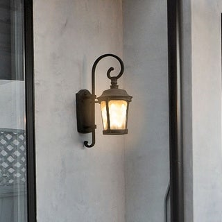 Maxim Die Cast Aluminum Frosted Seedy Shade Dover EE 1-light Outdoor Wall Mount