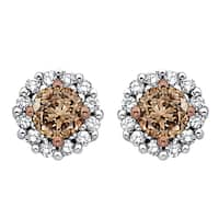 10k White Gold 1/2ct TDW Brown and White Diamond Halo Earrings