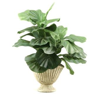 D&W Silks Fiddle Leaf Fig in Ceramic Planter