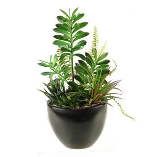 D&W Silks Succulent, Aloe and Echeveria in Round Ceramic Planter