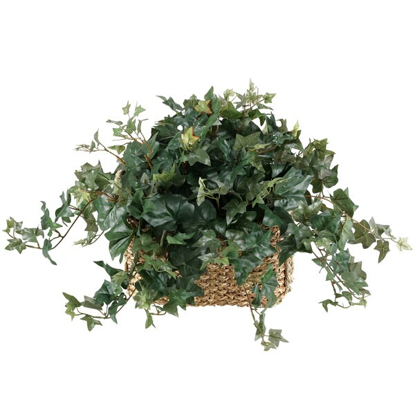 D&W Silks English Ivy in Rectangle Planter