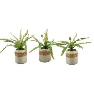 D&W Silks Deer Fern in Round Ceramic Planter - Set Of 3