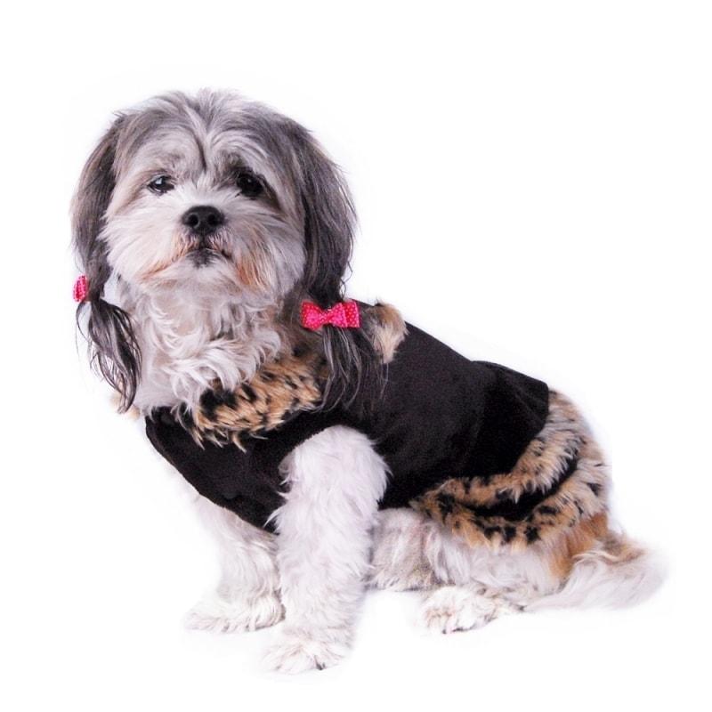 ANIMA Black Pet Puppy Dog Dress With Brown Leopard Trim (...
