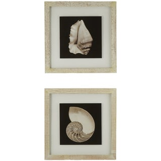 Cream Shells Framed Giclee Print Wall Art (Set of 2)