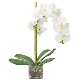 White Orchid Silk Flower with Glass Vase